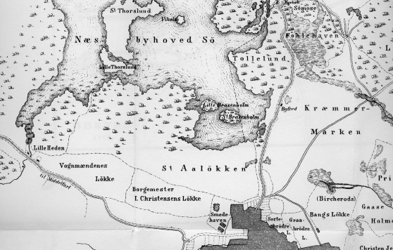 Kort Odense 1717