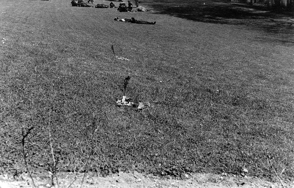 Blomster i Eventyrhaven ved stedet, hvor Sigurd Hansen og Arne Poulsen faldt 5.5.1945.